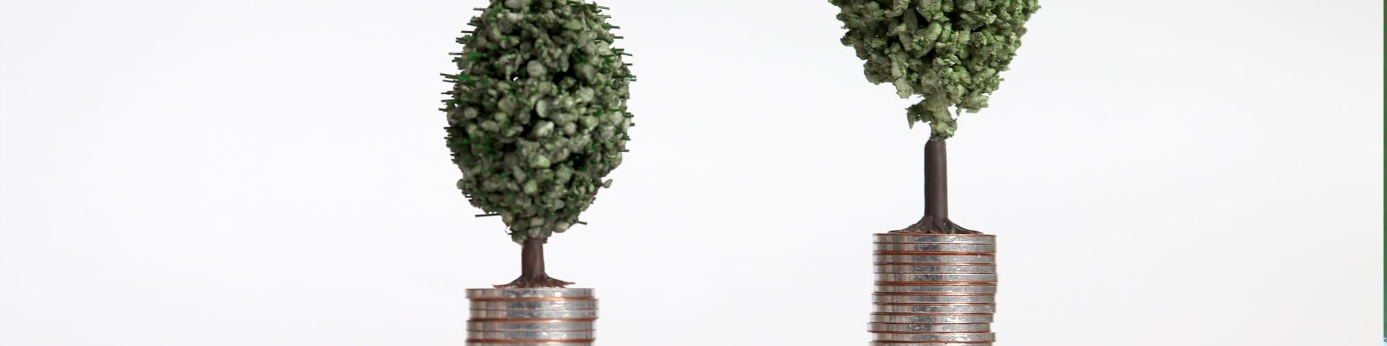 Fiscalidad de las Sociedades Agrarias de Transformación